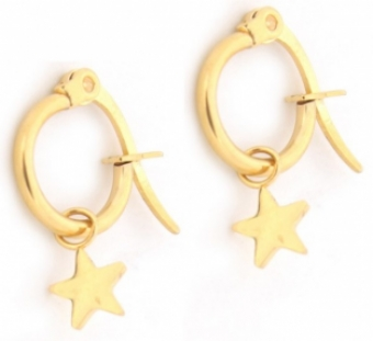 Oorbellen Hoops & Star stainless steel goud